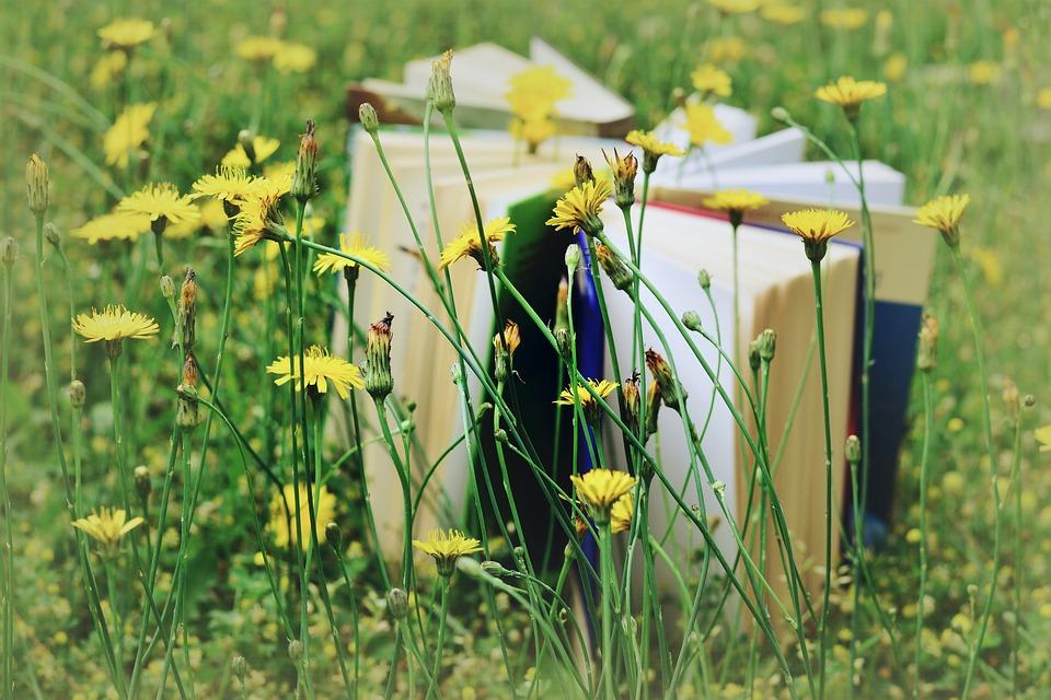 8 boeken waar je blij van wordt