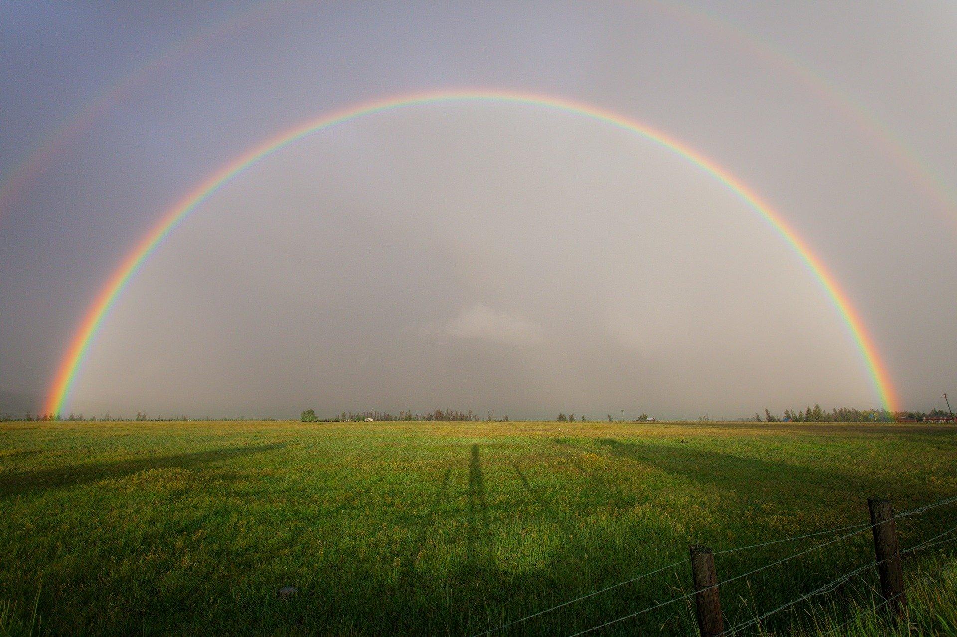 Blog Rinnie: De vele kleuren van de regenboog